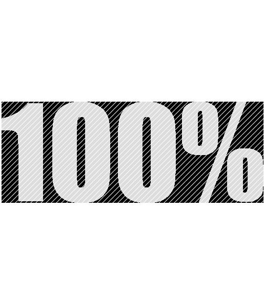 100prozent20